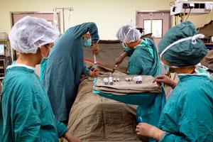 Пересадка костного мозга в Корее